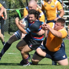 BARNARD CUP PREVIEW