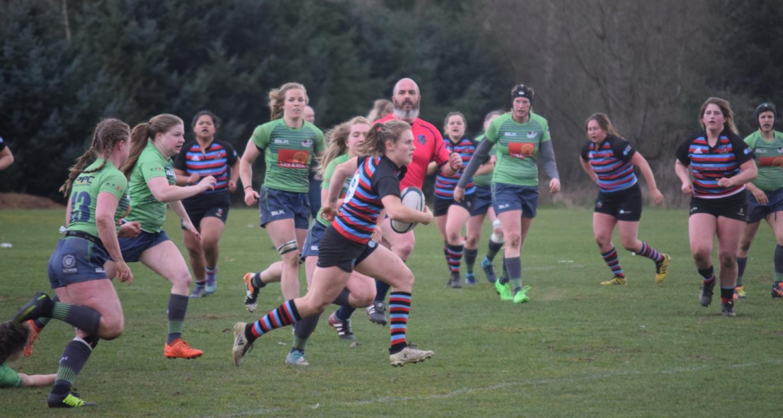 Rugby Aplenty! - Image 2