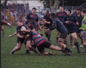 Rugby Aplenty! - Image 5