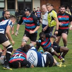 Westshore Quadfecta – Local Derby