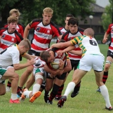 A Plethora of Junior Rugby