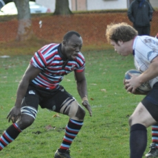 Vegas Sevens-Vets Called Upon For Results