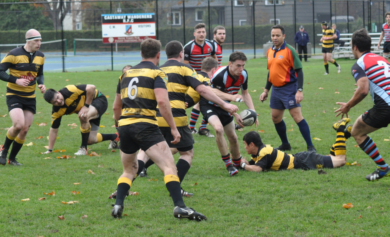 Rugby Resumes